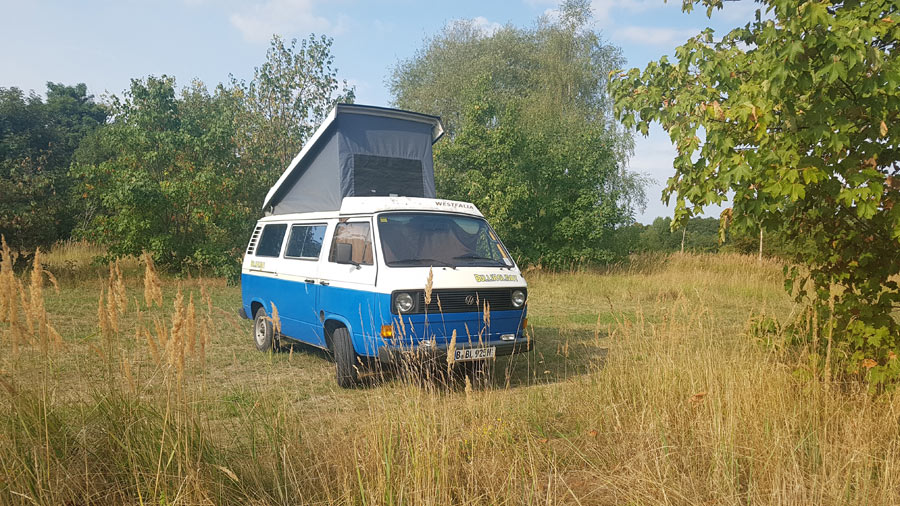 11256_VW-Bus-Blumo-mit-Aufstelldach-in-der-Natur